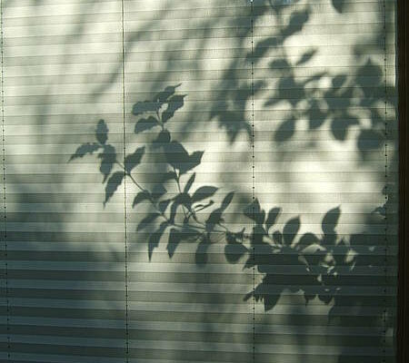 Galerie_18_Schatten_01